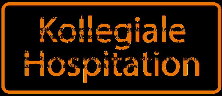 csm_Kollegiale_Hospitation2_png.png