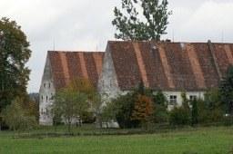 Benedikt - 3.jpg