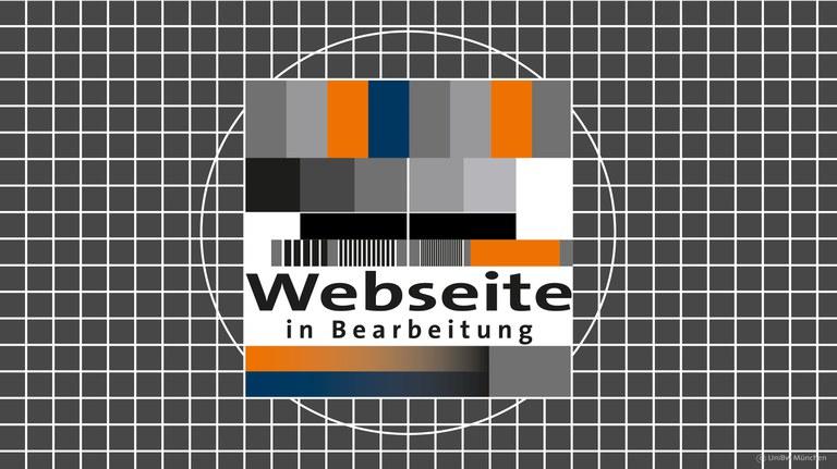 Webseite in Bearbeitung.jpg