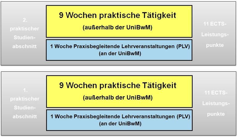 Bild Praktische Studienabschnitte 2 TIKT.png