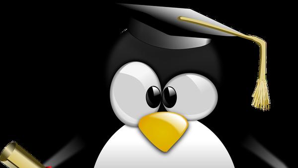 Einführung in UNIX (Dokumentenserver)