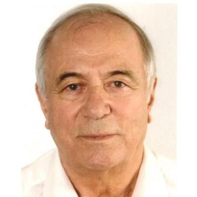 Prof. Dipl.-Ing. Peter Pauli