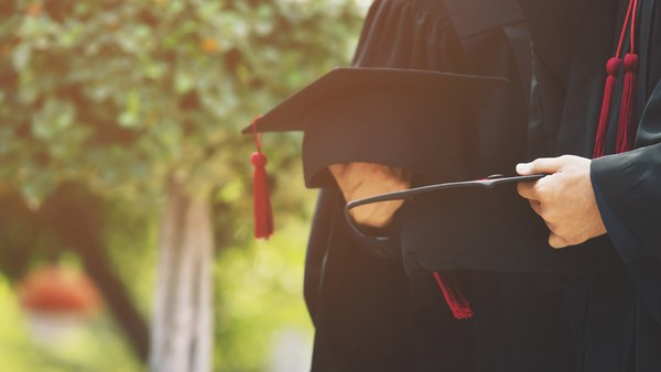 Doctorate and Habilitation