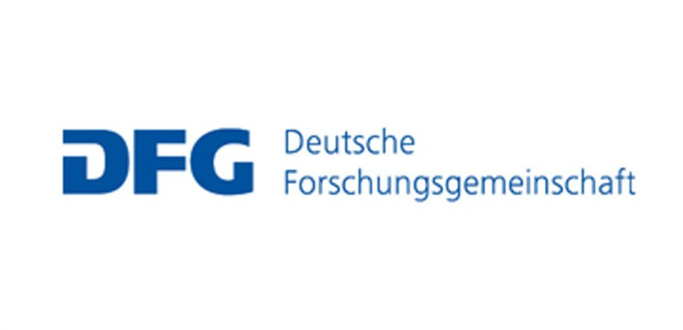 dfg_logo_schriftzug_blau.jpg
