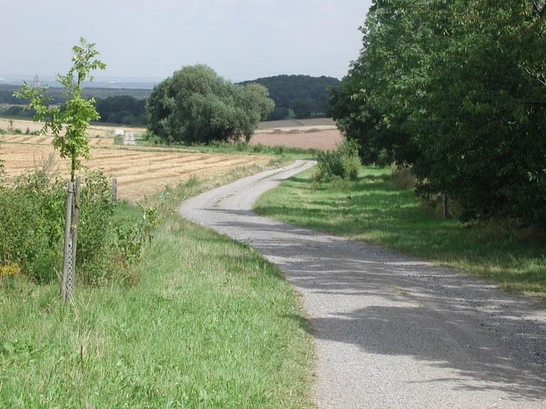 Wegebau.jpg