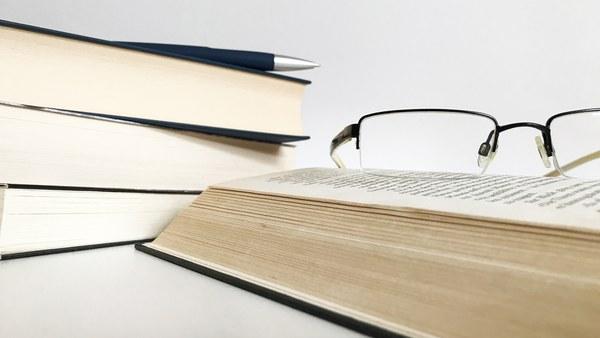 Studienbegleitende Literatur