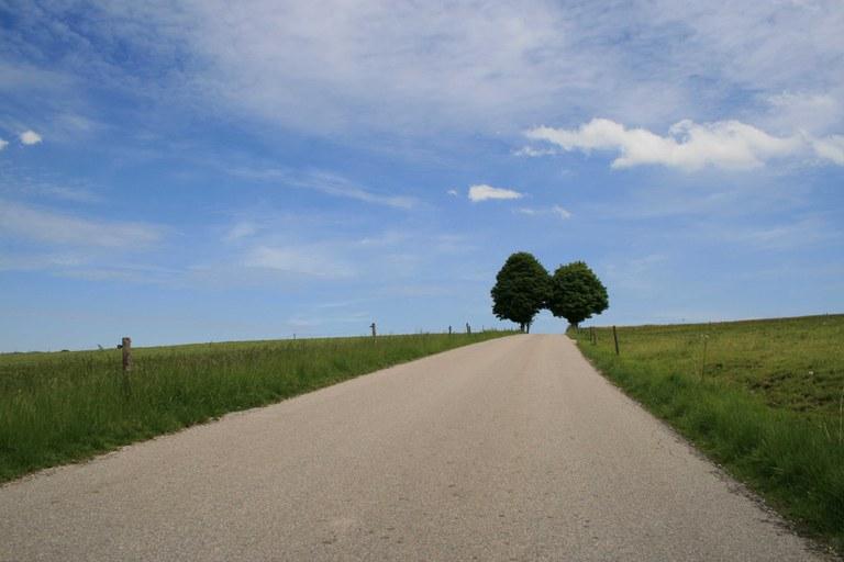hsamb_landschaft.JPG
