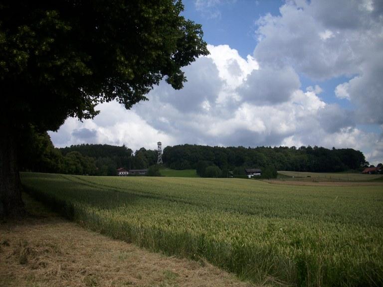 EBE Forst Turm