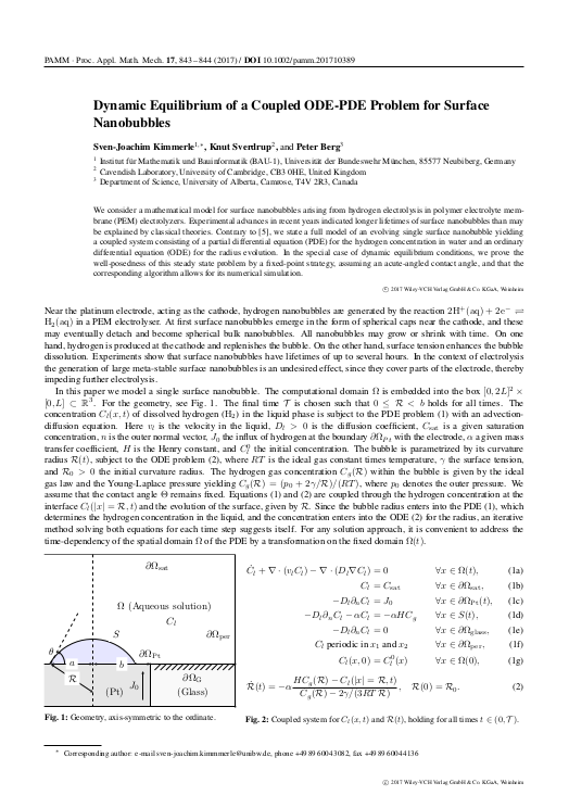 Dynamic Equilibrium of a Coupled ODE-PDE Problem for Surface Nanobubbles