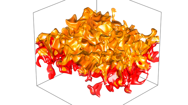 Direct Numerical Simulation of turbulent premixed combustion