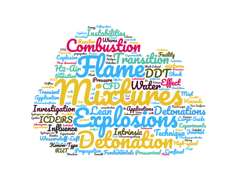 wordcloud_Hasslberger.png