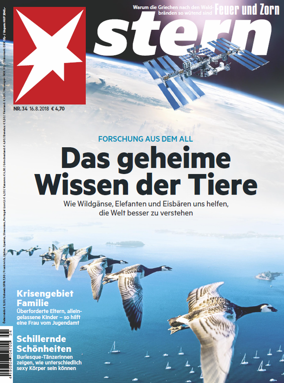 Stern_Magazin_Titelbild.png