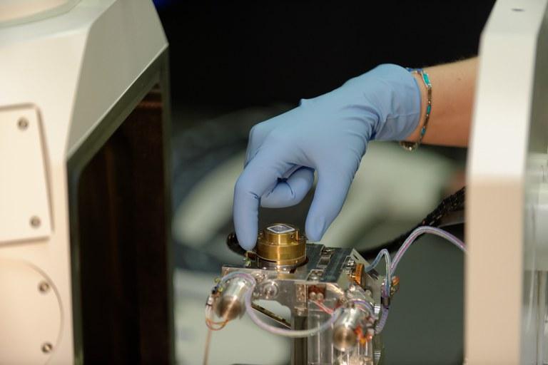 Montage einer Probe auf dem Probenträger des REM